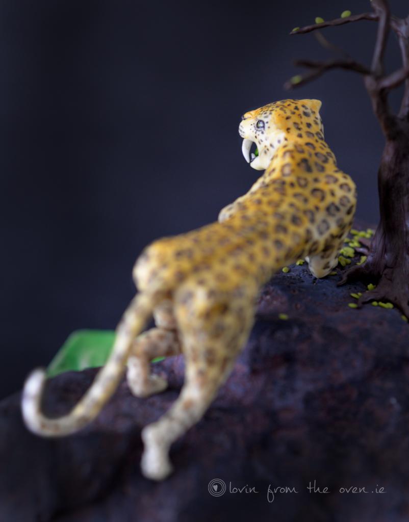 Leopard-Back
